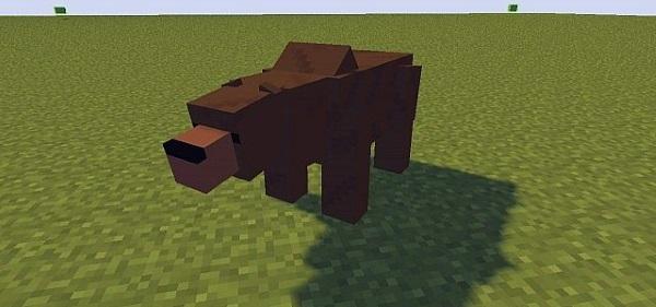 как приручить медведя