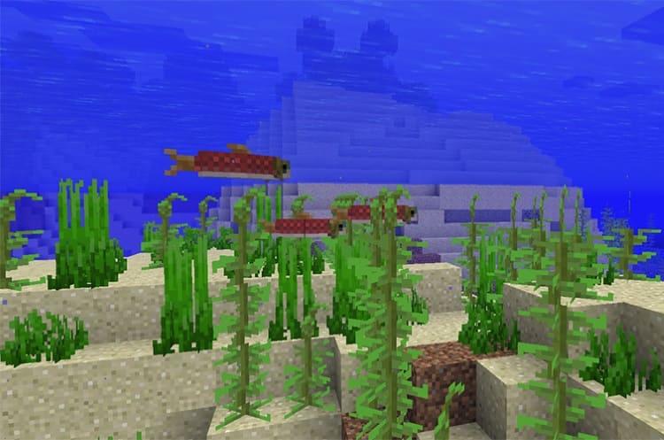 лосось в Minecraft 1.13